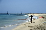 Sal : Santa Maria : beach : People Recreation