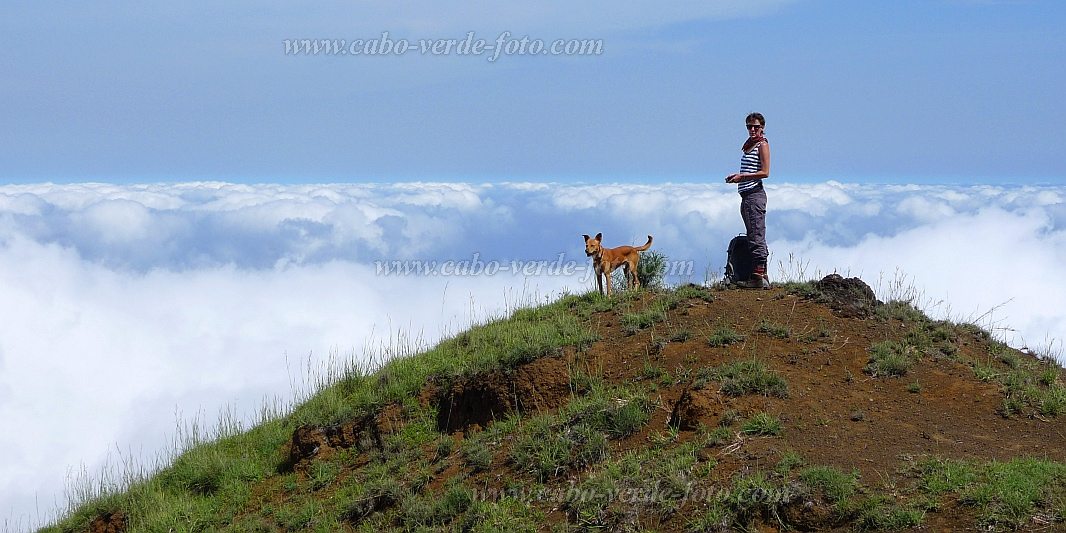 Santo Antão : Gudo de Caxa : summit clouds dog : Landscape Mountain